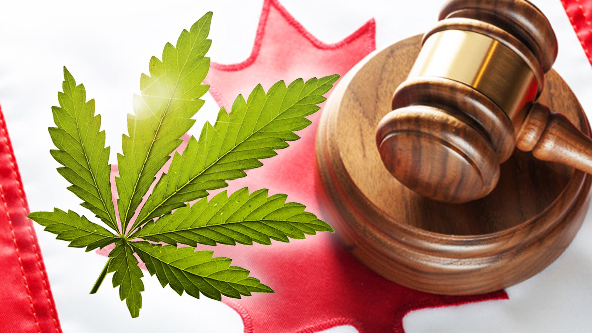 marijuana laws in canada